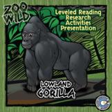 Lowland Gorilla - 15 Zoo Wild Resources - Leveled Reading, Slides & Activities