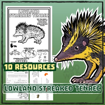 Lowland Streaked Tenrec -- 10 Resources -- Coloring Pages,
