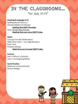 Luau Themed Newsletter Template