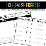 True False Equations FREEBIE!