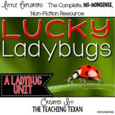 Lucky Ladybugs:  A Non-Fiction Ladybug Unit