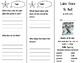Luke Goes to Bat Trifold - Journeys 2nd Grade Unit 4 Week 2 (2011)