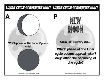 Lunar Cycle Scavenger Hunt