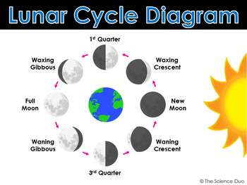 Background 26  Lunar Phases  NAAP