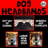Dog Headbands