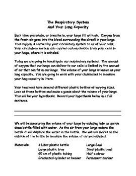 Lung Capacity Lab, Human Body, Respiratory System, Volume (Word & PDF)
