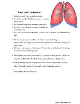 Lung Project and Worksheet