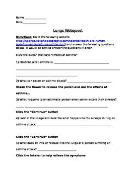 Lungs  Webquest