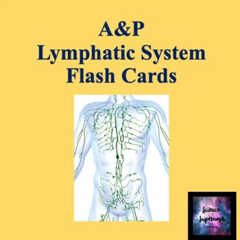 Lymphatic System Flash Cards