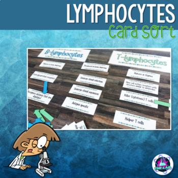 Lymphocytes Card Sort
