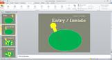 Virus Lytic Cycle Animation