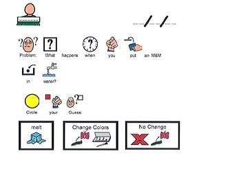 M&M Lesson PEC Cover Sheet