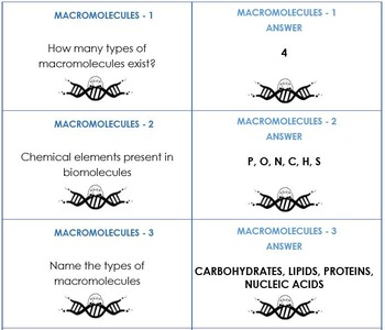 MACROMOLECULES REVIEW FLASHCARDS