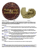 MAKE A FOSSIL