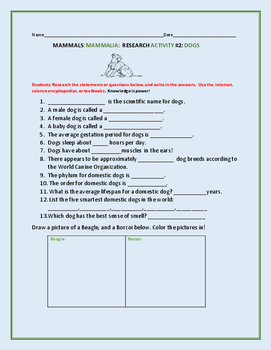 MAMMAL RESEARCH ACTIVITY: DOGS- GRADES 3-6