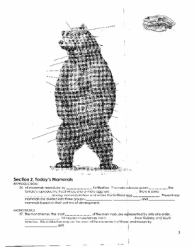 MAMMALS GUIDED NOTES & PRACTICE PAGES