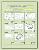 WORLD OF MAMMALS: RODENTS: A STEM ACTIVITY#1