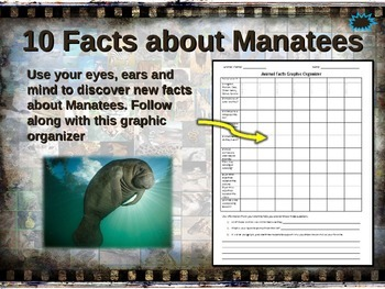 MANATEE: 10 facts. Fun, visual, engaging PPT (w links & fr