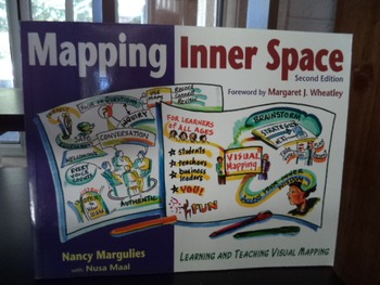 MAPPING INNER SPACE  1-56976-138-8