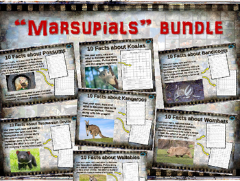 MARSUPIALS BUNDLE: 7 visually engaging PPT w facts, video