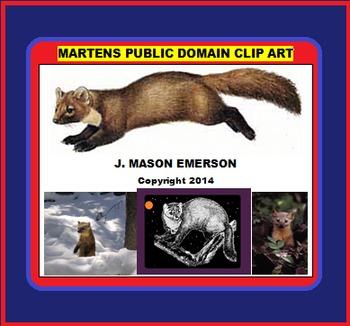 ARTS, BIOLOGY: MARTENS PUBLIC DOMAIN CLIP ART (Some Spanish; 36 Pub Dom Images)