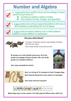 MATHS POSTERS: NZC and NZ National Standards (Year 3 and 4)