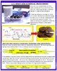 MATTER AND ITS INTERACTIONS, (NGSS MS-PS1) Activity Packet