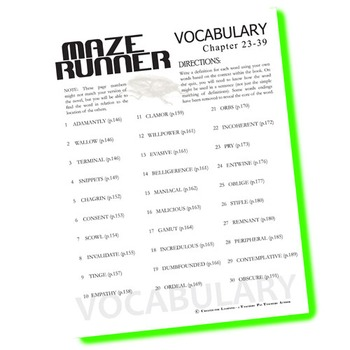 THE MAZE RUNNER Vocabulary List and Quiz (chap 23-39)