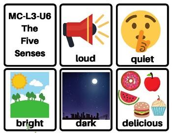MC-L3-U6 Flashcards: Level 3 Unit 6: The Five Senses