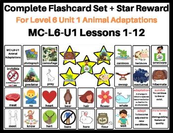 MC-L6-U1 Flash Cards: Level 6 Unit 1- Animal Adaptations (VIPKID)