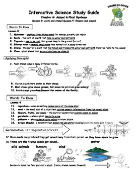 MCSB – 3rd Grade Interactive Science (Study Guide/Test Combo Ch  6-Lesson  3&4)