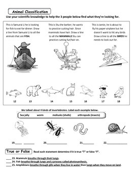 MCSB – 3rd Grade Interactive Science (Study Guide/Test Combo Ch. 6-Lesson 5)