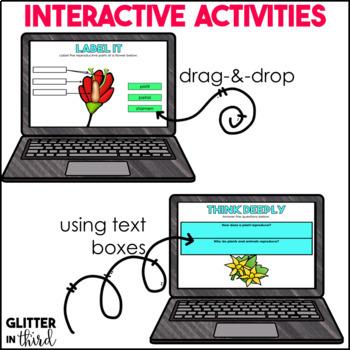 MEGA BUNDLE Fourth-Grade Science for Google Drive & Google Classroom