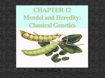 MENDELLIAN GENETICS