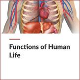 MICRO - Functions of Human Life