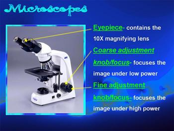 MICROSCOPE LESSON