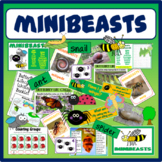 MINIBEASTS INSECTS SCIENCE RESOURCES EARLY YEARS KS1-2 DISPLAY ANIMALS