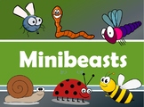 MINIBEASTS - Let's learn about insects and other small creatures!