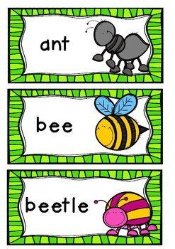 MINIBEASTS bugs  theme topic words WORD WALL vocabulary flash cards