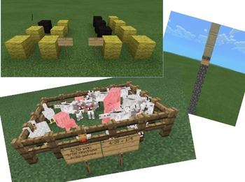 Minecraft Fractions
