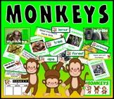 MONKEYS PRIMATES TEACHING RESOURCES KEY STAGE 1-2 SCIENCE DISPLAY ANIMALS