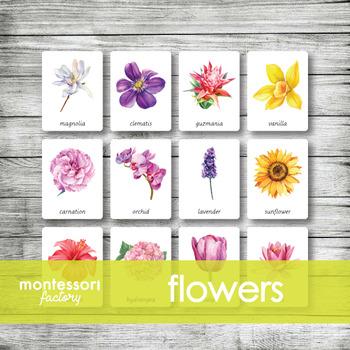 FLOWERS | Montessori Nomenclature - Flash - 3 Part Cards | PDF