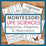 MONTESSORI Life Science/Zoology - Migrators, Adaptors, and Hibernators