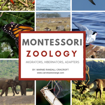 MONTESSORI Life Sciences - Zoology - Migrators, Adaptors, and Hibernators