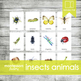 MONTESSORI Nomenclature Cards | INSECTS | Flash Cards | 3 Part Cards | Education