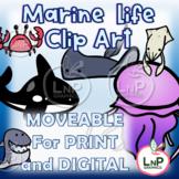 MOVEABLE Marine Life Classroom Theme Clip Art for Digital,