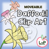 MOVEABLE Spring Daffodil Flowers Clip Art for Digital Prod