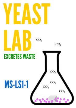 MS-LS1-1:  Yeast Lab - Excretes Waste