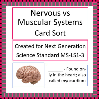 MS-LS1-3 Nervous vs. Muscular Systems Card Sort