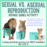 MS-LS3-2 Sexual vs. Asexual Modeling Assessment  - PDF & Digital